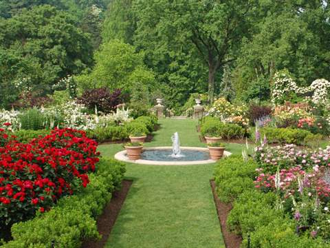 تفسير رؤية حديقة في المنام أو الحلم