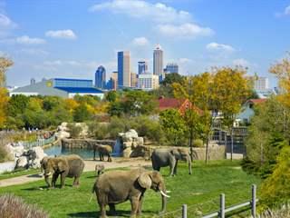 تفسير رؤية حديقة حيوان في المنام أو الحلم
