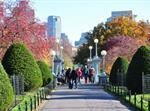 تفسير رؤية حديقة عامة في المنام أو الحلم