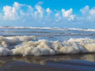 تفسير رؤية زبد البحر في المنام أو الحلم