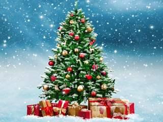 تفسير رؤية شجرة عيد الميلاد في المنام أو الحلم