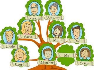 تفسير رؤية شجرة الأنساب في المنام أو الحلم