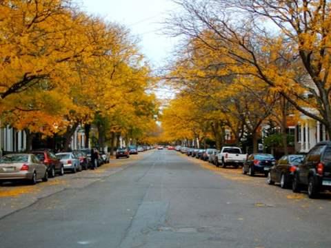 تفسير رؤية شارع في المنام أو الحلم