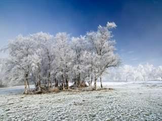 تفسير رؤية جليد في المنام أو الحلم
