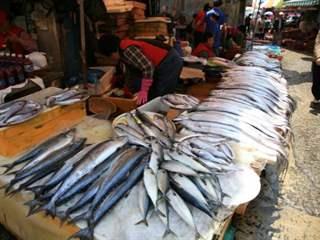 تفسير رؤية سوق السمك في المنام أو الحلم