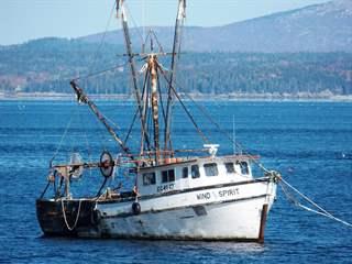 تفسير رؤية مركب صيد في المنام أو الحلم