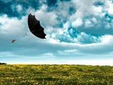 تفسير رؤية الريح في المنام أو الحلم