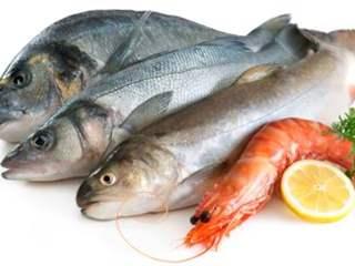 تفسير رؤية السمك في المنام أو الحلم