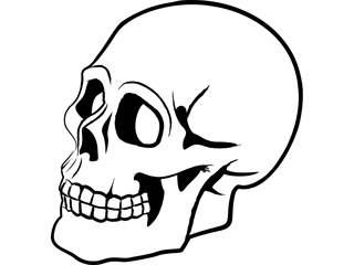 تفسير رؤية جمجمة في المنام أو الحلم